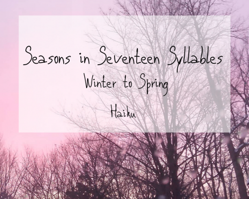 Seasons in 17 Syllables: Winter to Spring