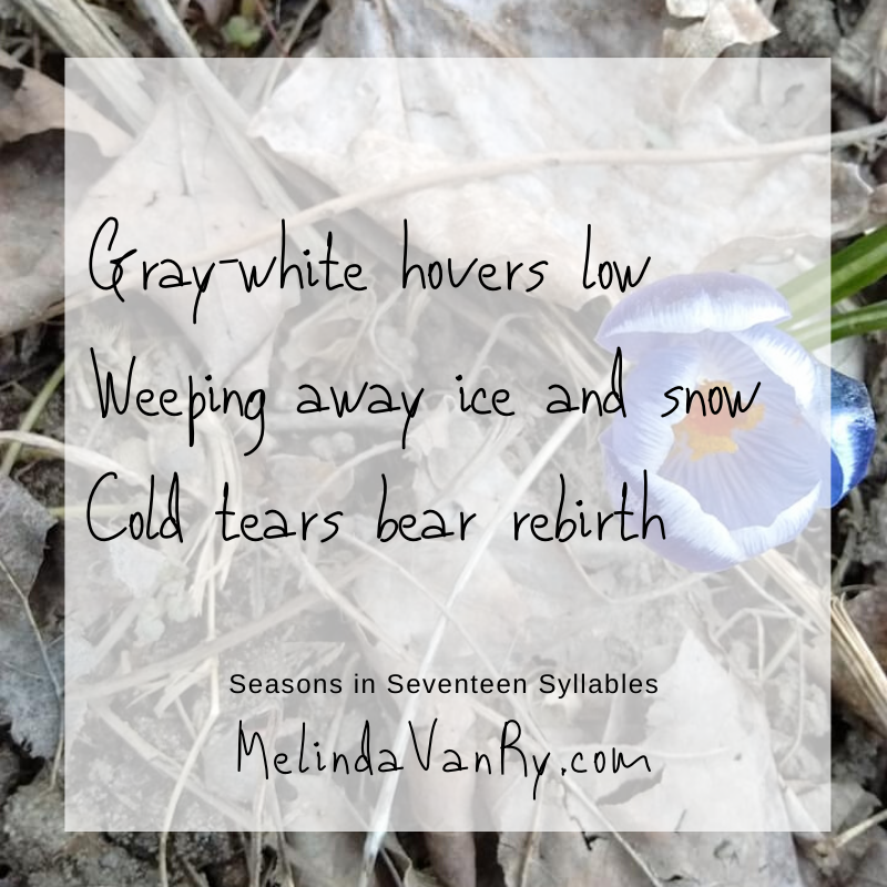 Gray-white hovers low Weeping away ice and snow Cold tears bear rebirth
