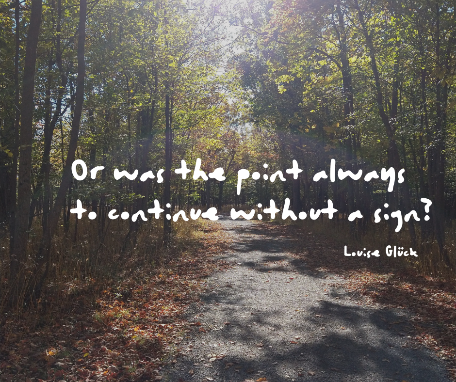 Or was the point always to continue without a sign? - Louise Gluck